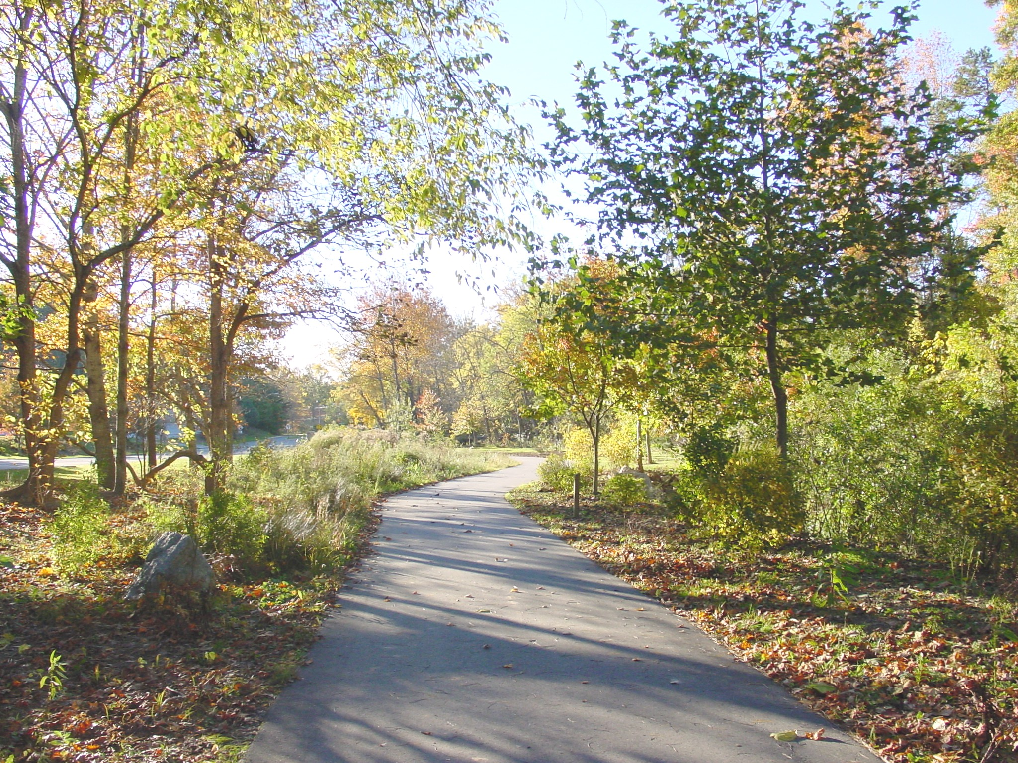 looking down greenway.natural area1